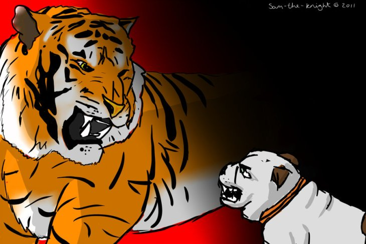 Tigers vs. bulldogs