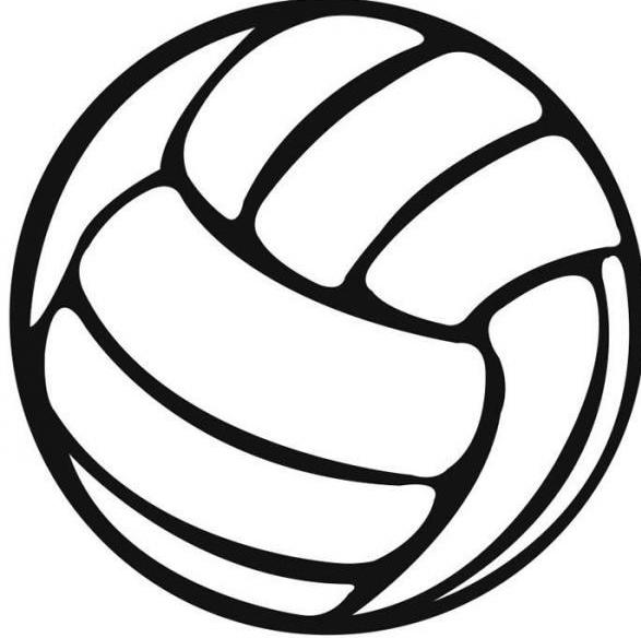 volleyball_000